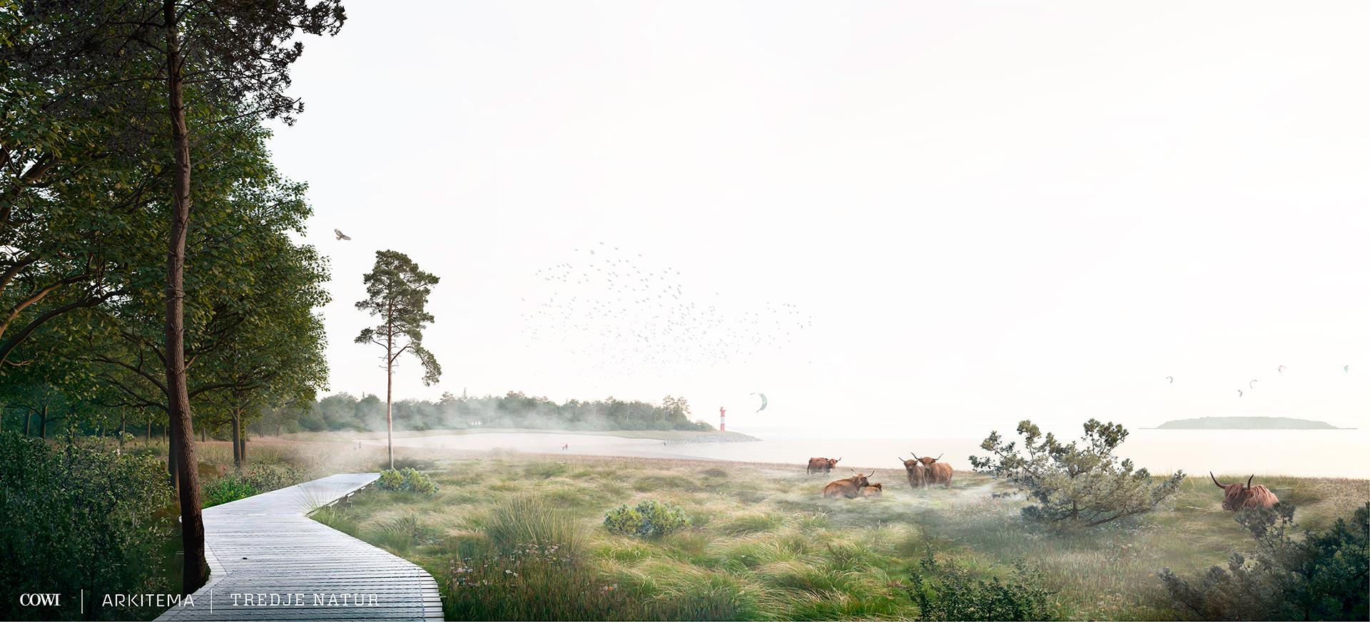 Visualisering - skovbrynet i det foreslåede kystlandskab på Lynetteholm